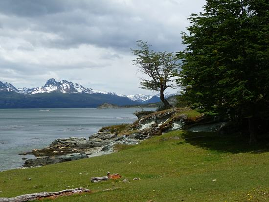 view over the Beagle Channel to the mountains in Chile