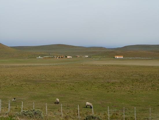 typically sheep farm with a lot of grazing land around